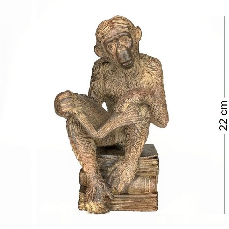 FB83235  (1-8) Обезьяна, поглощающая книгу Дарвина. 12*13*22см