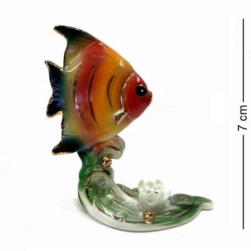 209206  (90) Рыба