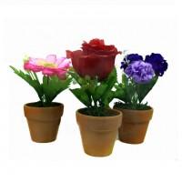 Цветы  4071  (168) в горшке 5 видов 15см